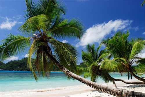 Seychelles: come, dove e quando