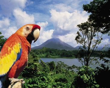 Costa Rica: parchi nazionali e aree protette