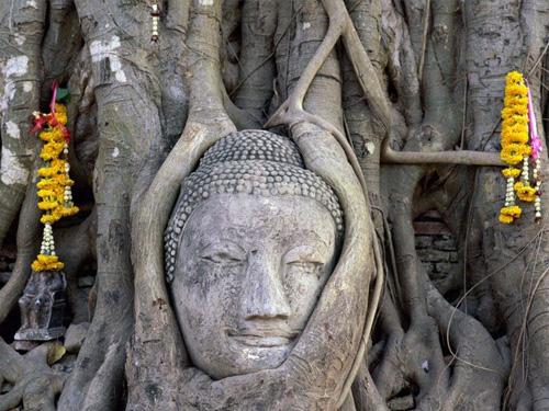 statua_budda_thailandia