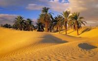 Tunisia: affascinante tour fra le oasi