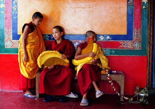 himalaya-tibet-image