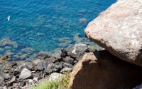I viaggi di Viaggi Fantastici: Sardegna, l'Asinara
