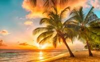 Barbados a tavola: la cucina dell'isola più cool dei Caraibi