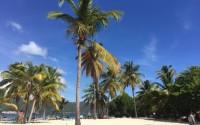 Repubblica Dominicana: tour a Cayo Levantado, tra mare e souvenir tipici