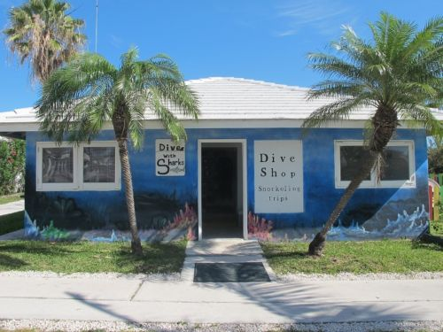 Reef Oasis Viva Bahamas - dive center